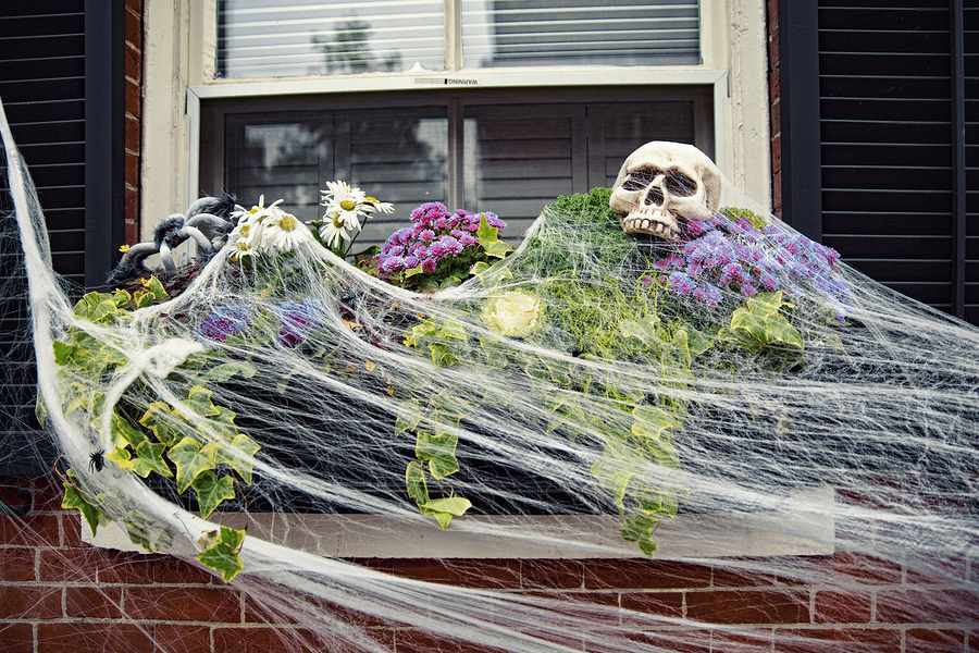 5 Front Yard Halloween Decor Ideas Mcdonough Landscaping