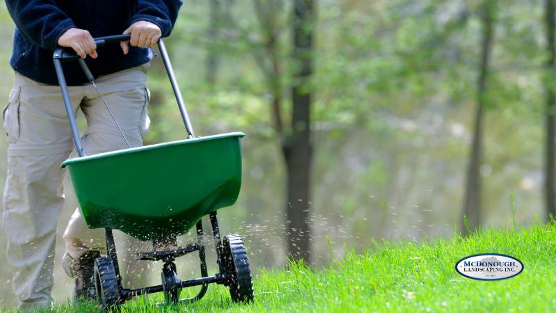 Simple Lawn Care Basics - Fertilizer