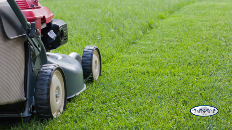 Simple Lawn Care Basics - Mowing