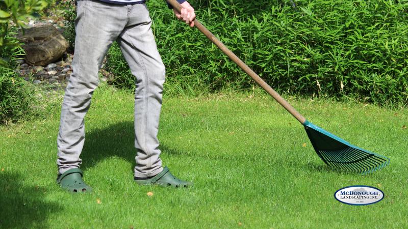 Simple Lawn Care Basics - Raking